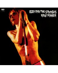 The Stooges - Raw Power 2LP
